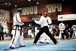 Taekwon-Do National Championships 2013